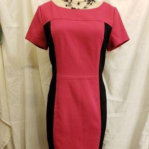 Jones New York fuscia slimming dress